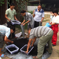 Making charcoal dust with young farmers at Little Donkey Farm.