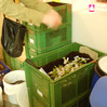 The organic wast was also collected for the compost.
