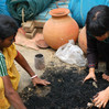 """Mixing with """"Hadiya"""" yeast and charcoal in preparation for composting."""