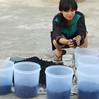 Making compost starter kits for exhibition visitors in New Delhi.